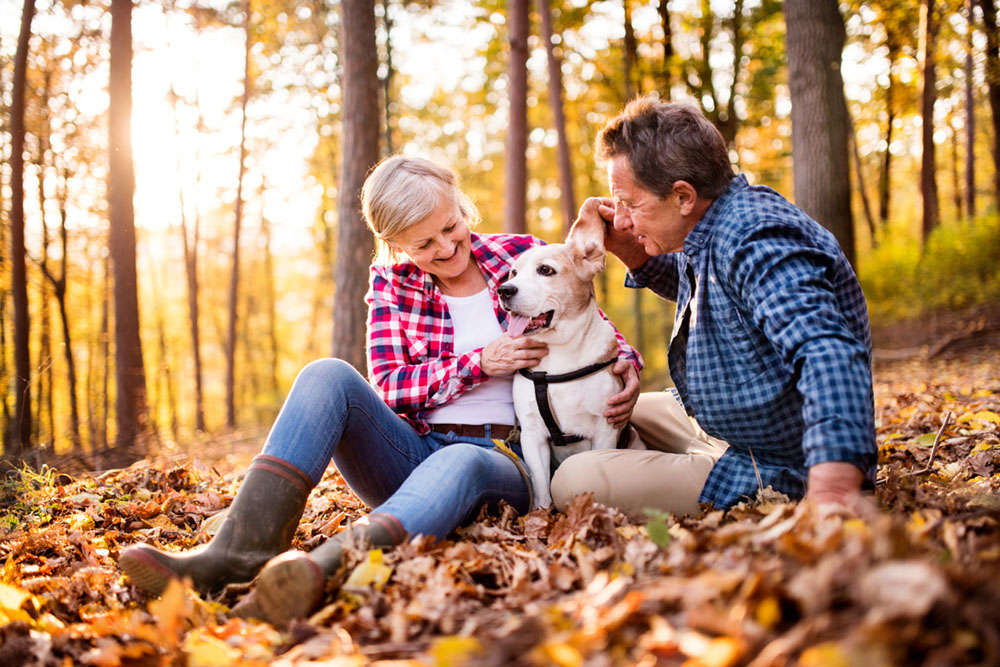 The benefits of living in a residential park home for dog owners