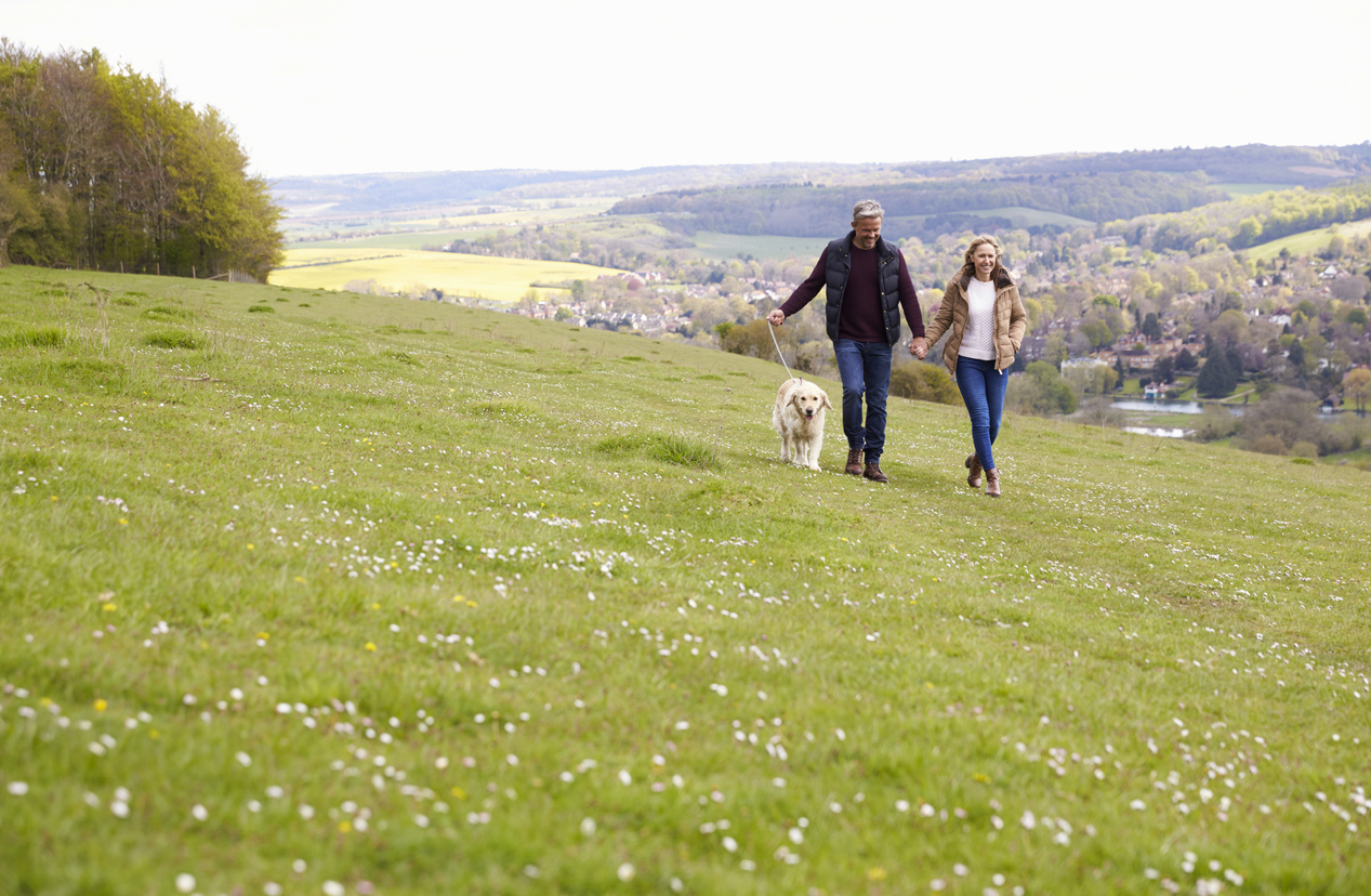The benefits for dog owners living in a residential park home